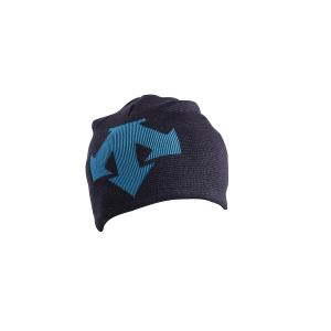 Descente Boys' Spirit Hat
