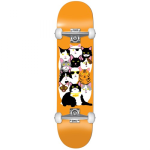 Enjoi Cat Collage V2 7.625 Skateboard Complete