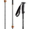 Black Diamond Traverse Pro Adjustable Ski Poles 2019