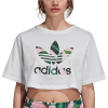 Adidas Crop T-Shirt - Women's