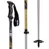 Armada AK Adjustable Ski Poles 2019