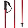 Armada Legion Ski Poles 2019