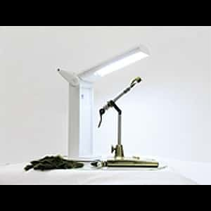Daylight Compact Lamp