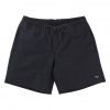 Burton Creekside Shorts Mens Bathing Suit