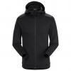 Arc'teryx Dallen Fleece Hoodie Mens Jacket 2020