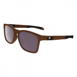 Catalyst Sunglasses Matte