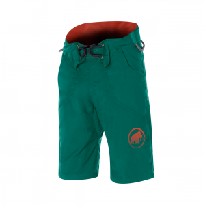 Realization Shorts Mens Pine