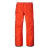 photo: Patagonia Men's Powder Bowl Pants