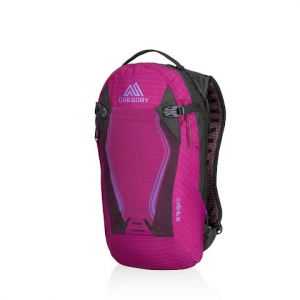 Gregory Amasa 6 Hydration Pack - Sangria Purple