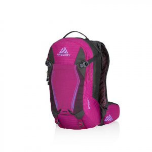 Gregory Amasa 14 Hydration Pack - Sangria Purple
