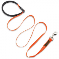 Browning Dog Training Lead - Blaze