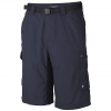 Columbia Mens Silver Ridge Cargo Short - 021greyash