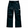 The North Face Youth Boy ' S Fresh Tracks Pant - Tnf Black
