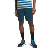 The North Face Men ' S Granite Face Shorts - Blue Wing Teal