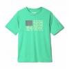 Columbia Boys ' Pfg Finatic Short Sleeve Shirt - Dark Lime Fish Flag