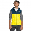 The North Face Boys ' Glacier Full Zip Hoodie - Lemon