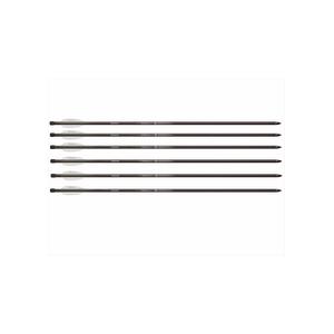 Benjamin Airbow Arrows 26″, 6 pack
