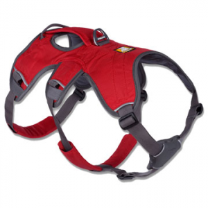 photo of a Ruffwear dog harness