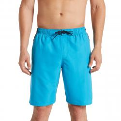 Nike Men's 9 In. Color Surge Volley Swim Shorts - Blue, XL