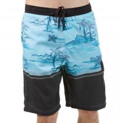 Burnside Men's Blue Hawaii E-Board Shorts