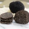 Fresh Black Winter Perigord Truffles from France - small - 1 oz