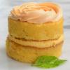 Florida Orange SunshineA(R) Cake - Mini Cakes - 12 cakes (3.2 oz each)