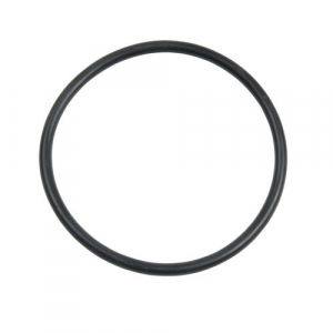 Carlson Pump Rubber O-ring