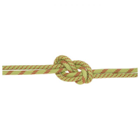 Edelweiss Curve ARC 9.8MMx60M Dynamic Rope UC - Green (446372T)