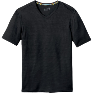 SmartWool Merino 150 Pattern V-Neck Shirt - Men's