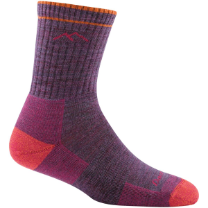 Darn Tough Coolmax Stripes Micro Crew Cushion Sock - Women's