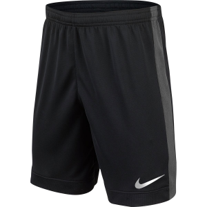Nike Flex 6in Challenger Short - Boys'