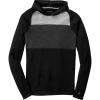SmartWool NTS Midweight 250 Color Block Pullover Hoodie - Men's