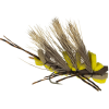 Montana Fly Company Kyle's King Kong Golden - 6-Pack