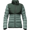 The North Face Denali Down Jacket - Women's