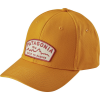 Patagonia Arched Type '73 Roger That Hat