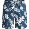 Quiksilver Waterman Agavy Volley Swim Trunk - Men's
