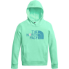 The North Face Logowear Pullover Hoodie - Girls'
