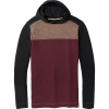 Smartwool Merino 250 Color Block Hoodie - Men's