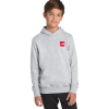 The North Face Logowear Pullover Hoodie - Kids'