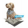 Family Bear | Dog Bandana (XS/S)
