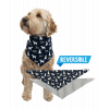Labs | Dog Bandana (M/L)