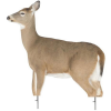 Montana Decoy Dreamy Whitetail Doe Decoy