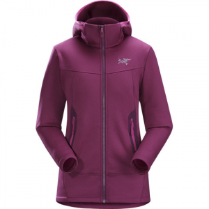 Arc'teryx Arenite Hoody - Womens Lt Chandra