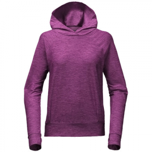 The North Face Motivation Classic Hoodie - Women's Wood Violet Heather
