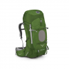 Osprey Aether 60 Backpack Bonsai Green Lg