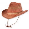 Pistil Dixon Hat Sienna One Size