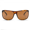 Electric Outline Sunglasses Gloss Tort/bronze