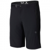 Mountain Hardwear Chockstone Midweight Active Shorts Black 32/12