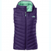 The North Face Tonnerro Hooded Vest