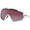 Oakley Wind Jacket 2.0 Snow